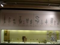 Großer Raum des Klostermuseums