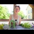 Stefanie Horn vom Klostergarten Saarn